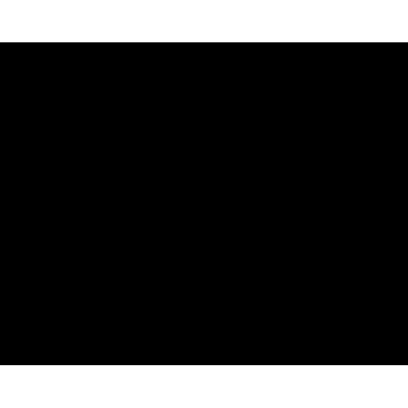 Uitvulplaatjes 10 mm zwart (25)